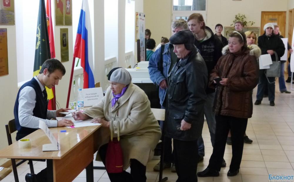 В Ростовской области на дополнительные выборы депутатов идут самовыдвиженцы