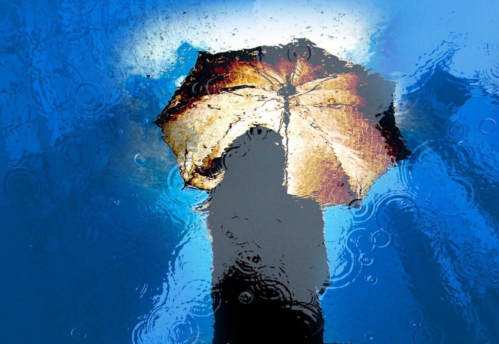 Дождливое воскресенье: прогноз погоды вРостове на18августа