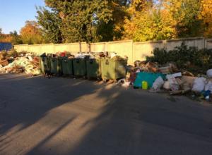 Невыносимо тошнотворное зловоние от мусорки рядом с кладбищем донимает и покойников, и живых