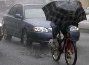В Ростовской области в выходные ожидаются сильные дожди и грозы
