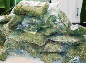 В Ростовской области изъяли 212 кг марихуаны на 30 млн рублей
