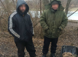 Браконьеры-водолазы с бензопилой ловили раков в судоходном канале Ростовской области