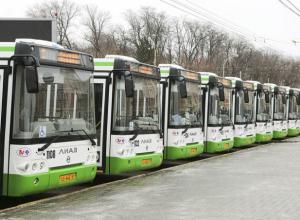 Стали известны номера маршрутов-счастливчиков, которые сохранят до 2021 года в Ростове