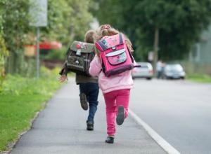 Обидевшаяся на школу третьеклассница поставила на уши учителей и родителей в Ростовской области