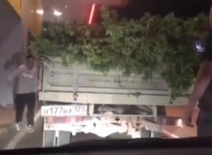 Таинственно телепортировавшийся на ростовскую заправку полный грузовик конопли из Краснодара попал на видео