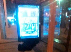 Лежащий на остановке мертвый мужчина шокировал пассажиров автовокзала в Ростове