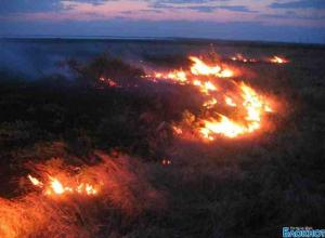 Площадь степного пожара  в Ростовской области достигла 90 гектаров