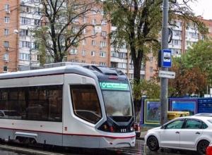 «Рогатый» монстр протаранил пассажирскую маршрутку в Ростове