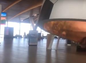 Поражающий воображение «футбольный» «Платов» восхищенные ростовчане сняли на видео