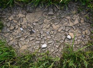 Засуха на Юге России: в Крыму зафиксировано двукратное падение урожая зерна