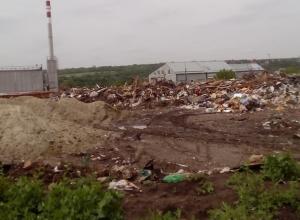 Шокированные чиновники обнаружили в Ростове свалку с горами мусора выше человеческого роста