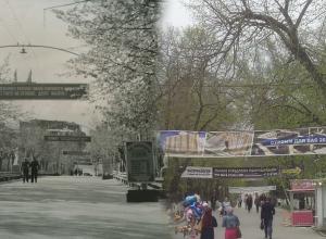 Тогда и сейчас: сто лет назад Ростов задыхался без зелени и тратил на парки ничтожные деньги