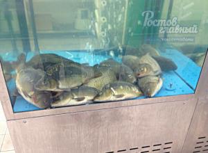 «Уснувшая в пятницу» рыба в гипермаркете отбила аппетит у ростовчан