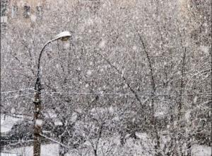 В Ростове на ближайшие три дня прогнозируют снегопад