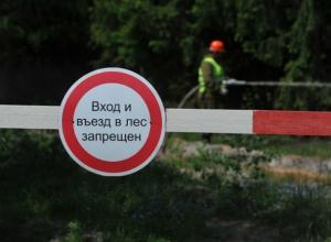 Жителям Ростовской области запретили ходить и ездить в лес до начала октября