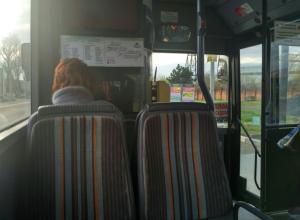 Стадное чувство пассажиров маршруток удивило жителя Ростова
