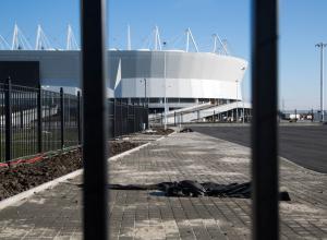 Вандалы украли четыре крымских ели возле нового стадиона «Ростов-Арена»