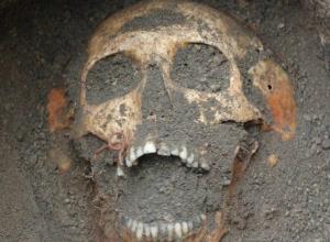 Ужасающие останки убивавших советских солдат гитлеровцев нашли под Ростовом