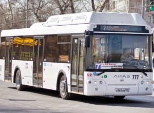 Администрация Ростова отменила результаты конкурса на перевозку пассажиров по 65 маршрутам