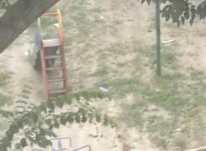 Громадное дерево рухнуло на детскую площадку в Ростове-на-Дону