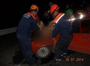 В ДТП с микроавтобусом в Ростовской области один погиб, двое пострадали