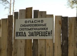 В Ростовской области более 260 бесхозных скотомогильников угрожают здоровью людей