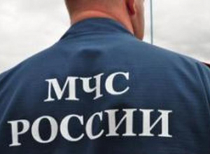 Руководители ЮРЦ и донского МЧС отчитались о доходах