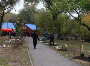 Аллею учителей заложили педагоги и школьники в Ростове