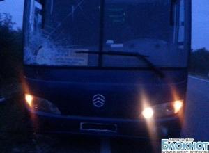 На трассе «Волгоград - Каменск» пассажирский автобус сбил пешехода