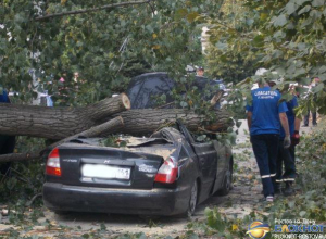 В Шахтах дерево рухнуло на автомобиль «Хендай»: водитель погиб. Фото