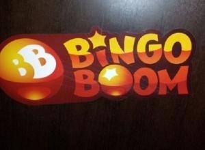 В Ростове осудят экс-директора «Бинго-Бум», заработавшего на азартных играх более 500 млн рублей
