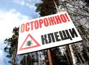 В Ростовской области от укусов клещей крымской лихорадкой заболели 43 человека, 2 скончались