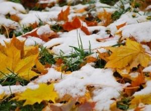 В Ростовской области в последние выходные осени будет идти снег