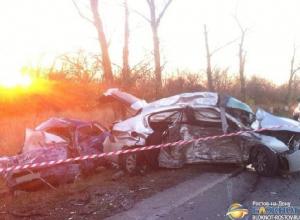 Видео с места ДТП на трассе Ростов-Ставрополь, в котором погибли шесть человек