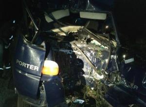 В Ростовской области «Хендай» врезался в дерево: водитель травмирован