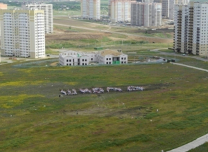 В микрорайоне «Суворовский» власти хотят построить школу на 1340 учащихся