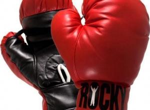 В Таганроге стартовал турнир по боксу