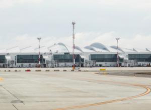 Более миллиона рублей потратит аэропорт «Платов» на консультацию по управленческим вопросам