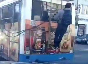 Висящего на троллейбусе «гигантского зайца» сняли на видео в Ростове