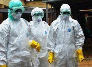 Ученые из Ростова предупредили о риске заразиться чумой во время путешествия по России