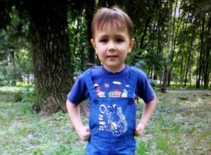В Ростовской области разыскивается 6-летний мальчик, которого отец не отдает матери