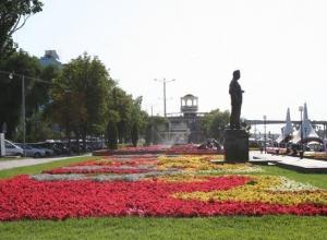 В Ростове выбирают лучший объект озеленения