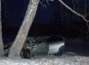 Неуправляемая иномарка под Ростовом врезалась в дерево: пострадали четыре человека