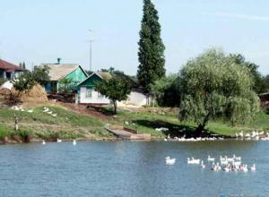 В Ростовской области пропала 9-летняя девочка