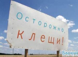 В Ростовской области два человека скончались от  крымской геморрагической лихорадки