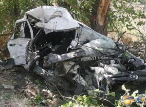 В Волгодонске «Лада Гранта» врезалась в дерево: водитель и пассажир погибли