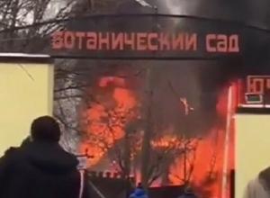 Огромное пламя охватило баню в Ботаническом саду Ростова