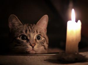Рабочая неделя начнётся с отключений электричества в Ростове