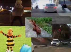 Топ-5 курьезных видеороликов, повеселивших жителей Ростова-на-Дону в 2016 году