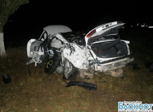 В Ростовской области при столкновении «Ауди А-6» с деревом разбилась семья из четырех человек